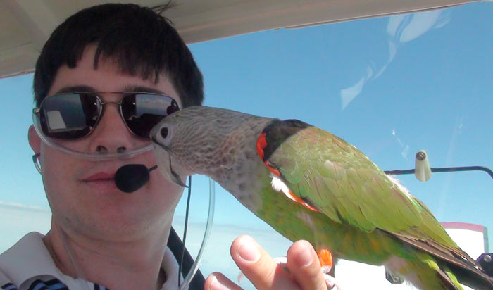 High Altitude Flying With Parrots
