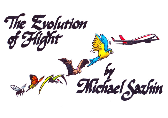 Evolution of Flight