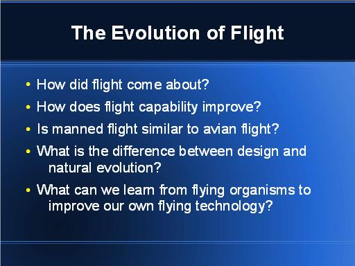 Questions about evolution of flight