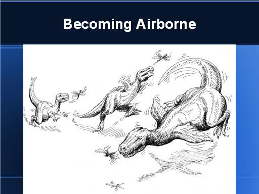 Becoming Airborne