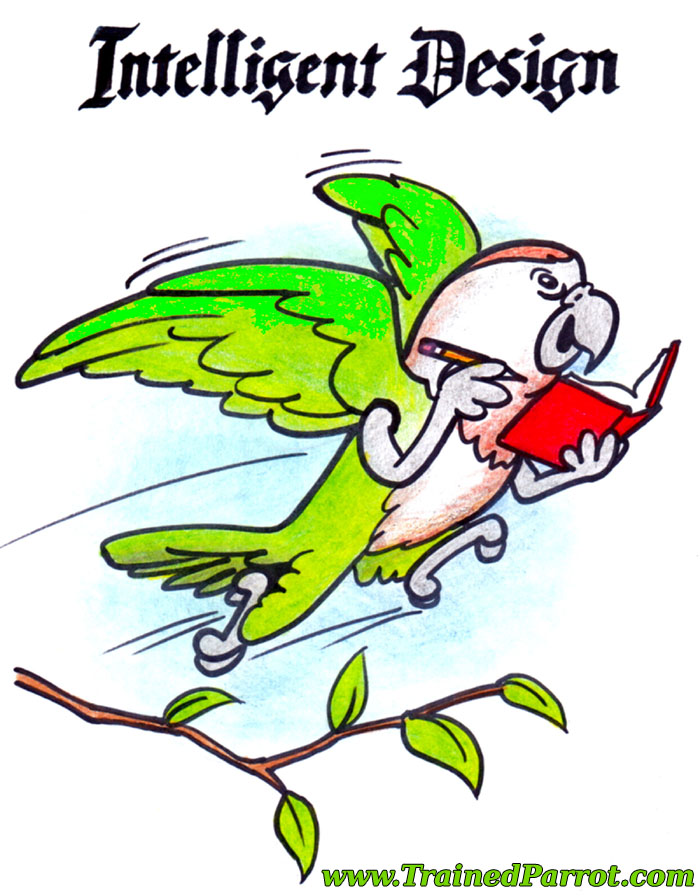 Intelligent Design Parrot Cartoon